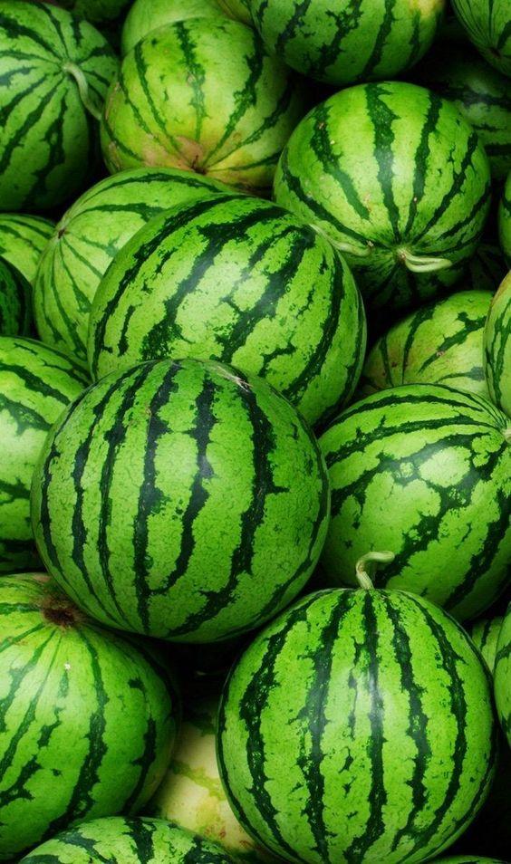 هندوانه صادراتی
