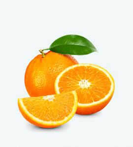 Orange export
