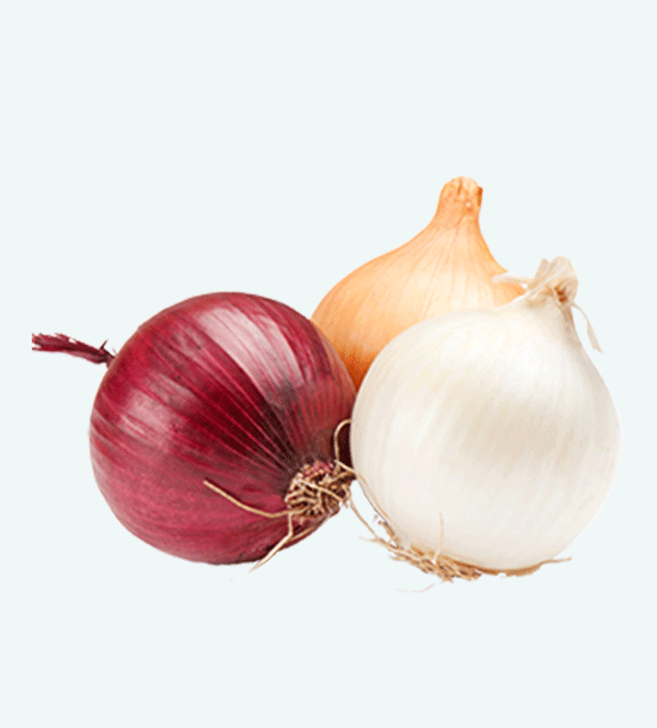 red onion export