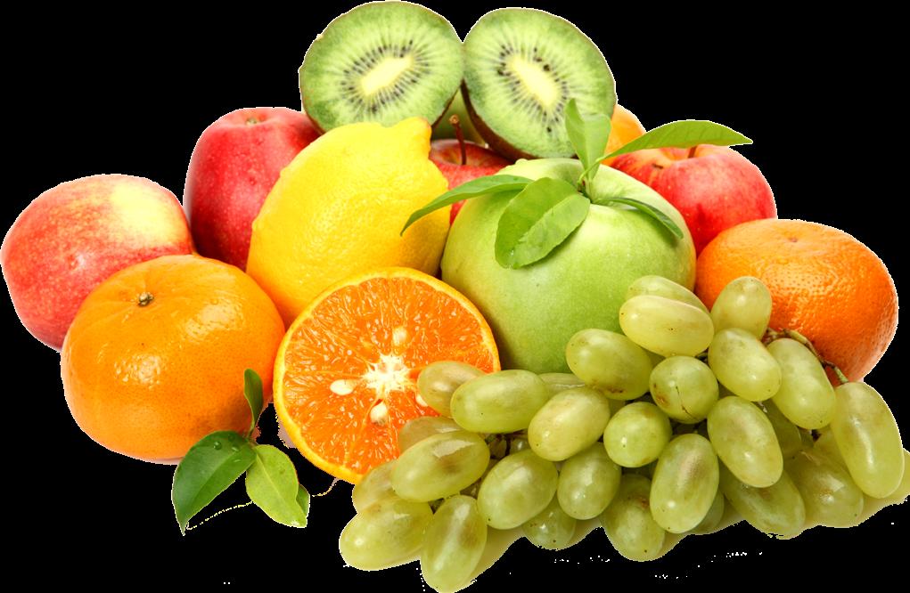 صادرات میوه و تره بار