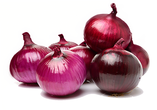 export red onion