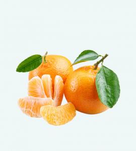 tangerine export
